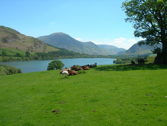 Loweswater, Lake District from Hudson Place