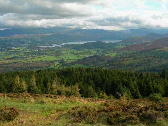 View from Seat How, Whinlatter, Lake District