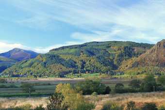 Whinlatter Forest, Lake District